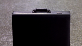 Mary's Briefcase
