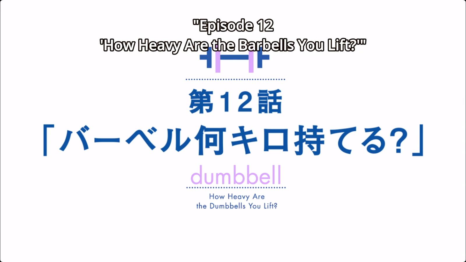 How Heavy Are The Barbells You Lift Dumbbell Nan Kilo Moteru