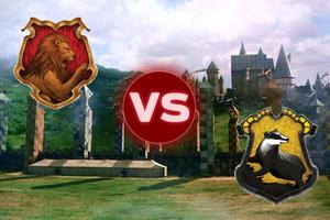 Gryffindor VS Hufflepuff