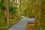 MC Nature trail