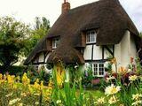 The Potioneer's Garden