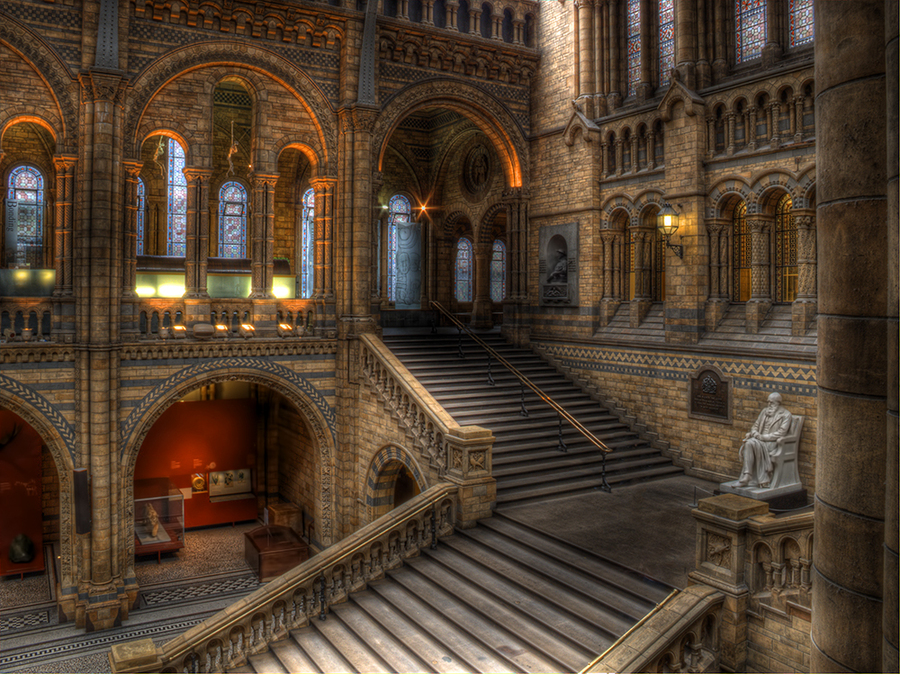 Hogwarts Moving Staircase
