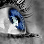 Blue Eye 3