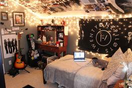 Allegri Residence/Lina's Room