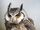 Crystal-Scops Owl.jpg