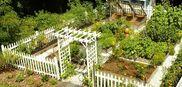 Briar Home/Gardens