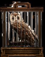 MM Tawny Owl