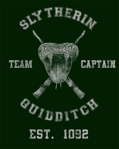 Slytherin quidditch by spacemonkeydr-d32ktrw