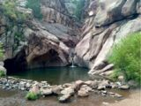 Old Forest/Swimming Hole