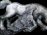 Melinda Bagman/Fantastic Beasts/Hippogriff