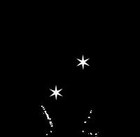 The Daily Prophet Logo