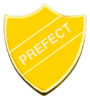 Prefect-Hufflepuff