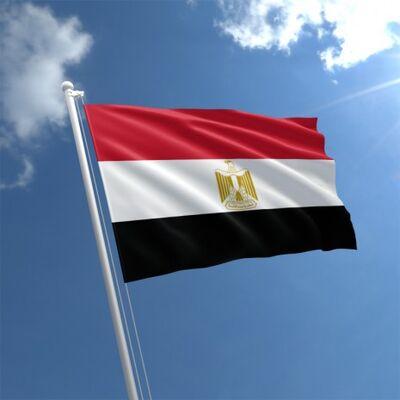 ENQT flag