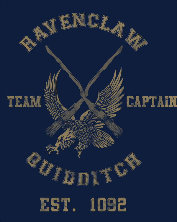 Ravenclaw quidditch by spacemonkeydr-d36cyti