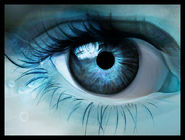 Blue Eye 5