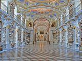 Vasilyev Mansion/Library