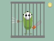 Clod in prison