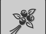 Obsidian Sparus