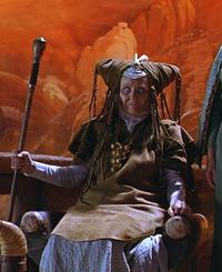 Wild Reverend Mother 2000