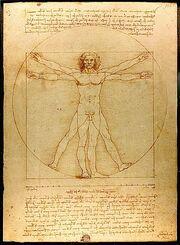 300px-Da Vinci Vitruve Luc Viatour