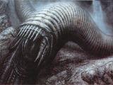 Sandworm/XD