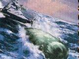 Whale fur