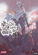 DanMachi Light Novel Volume 10 LE Cover