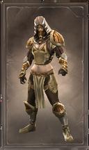 Shimmering holarin armor