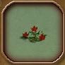 Bloodthistleplant icon