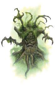 Wizened elder
