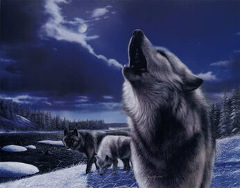 KD0704Howling-Wolves-Posters
