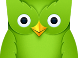 Duolingo (company)