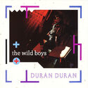 132 the wild boys song uk DURANC 3 grey duran duran duranduran.com discography discogs wikipedia