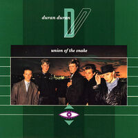 Union of the snake song wikipedia duran duran