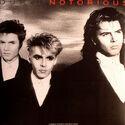 DDND 331 lp 2015 duran duran notorious album vinyl