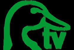 DucksTV logo