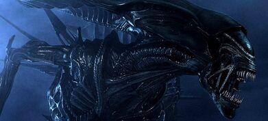AliensPost3