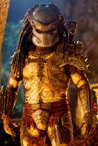Jungle-Hunter-Predator-Named-Classic-Predator-from-Predators-predator-22941885-427-640