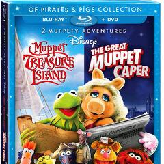 2013 DVD + Blu-ray cover