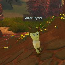Miller Rynd