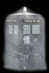 Tardis Web Covered
