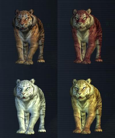 Tigercolors