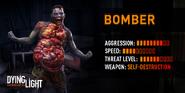 DL Bomber Information