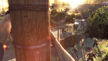 Dying Light (15)