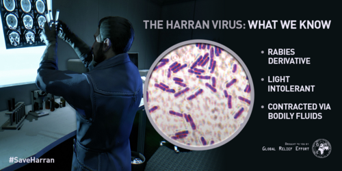 The Harran Virus
