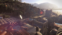 Dying Light (7)