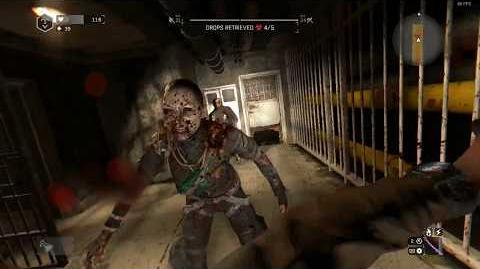 Dying Light Bright Mountain Tunnel Quarantine Zone