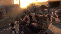 Dying Light (9)