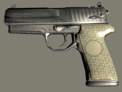 Rais's Gun