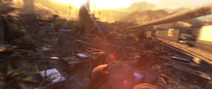 Dying Light (10)